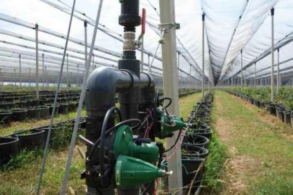 navodnjavanje-big-harvest-32AA6E72B-DCD3-5731-406F-0C0DFE27D0DD.jpg